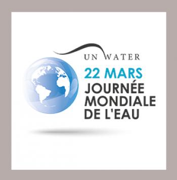 Risultati immagini per logo journee mondiale de l'eau 2017